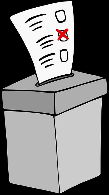 Consulta eleitoral para escolha de chefe e subchefe